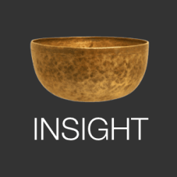 insight-timer logo