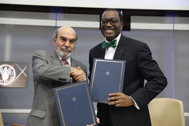 Pour éradiquer la faim et créer de la richesse en Afrique, la Banque africaine de développement et la FAO ciblent les investissements agricoles