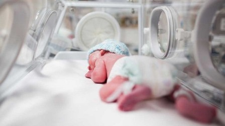 Estão procurando pessoas para abraçar e dar calor a bebês prematuros e assim salvá-los!