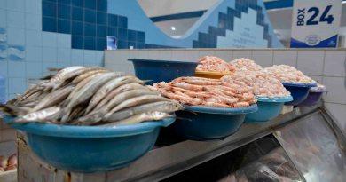 Mercado do Peixe: Permissionários agradecem aos envolvidos no esclarecimento de aglomerações