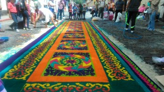 Una alfombra preciosa