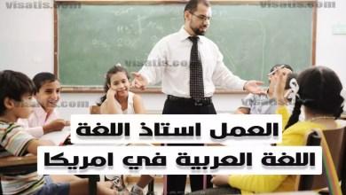 العمل في امريكا مدرس لغة عربية