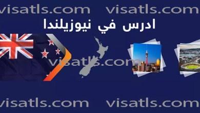 دراسة في نيوزيلندا – المنح و تكاليف الدراسة في الجامعات نيوزيلندا