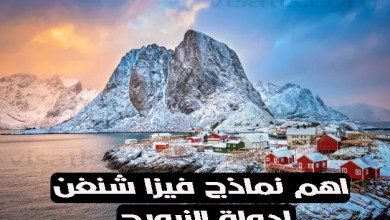 نموذج فيزا شنغن النرويج 2021 واهم 4 خطوات لتفادي رفض طلبكم