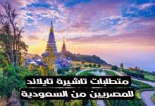 تاشيرة تايلاند للمصريين من السعودية وإمكانية الحصول عليها اون لاين