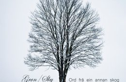 Grøn/Sky CD-omslag