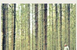 CD – Halmrast: Hematt