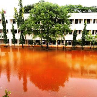 My hostel: Drowning