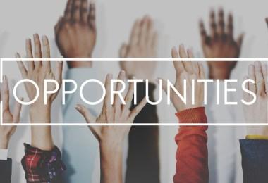 Opportunità di lavoro nel 2019
