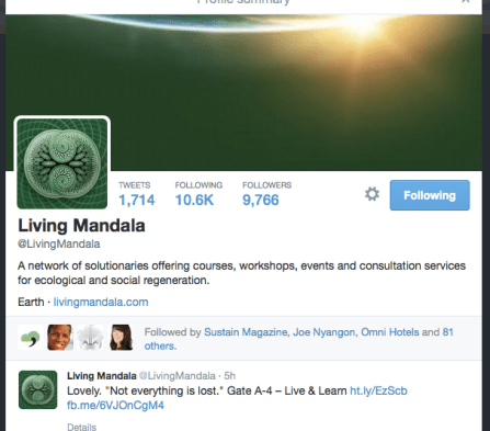Built this Twitter page from 0 -- today has grown organically to 10K.