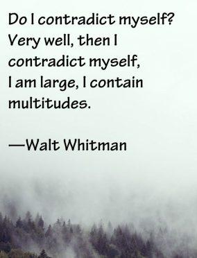 do i contradict myself