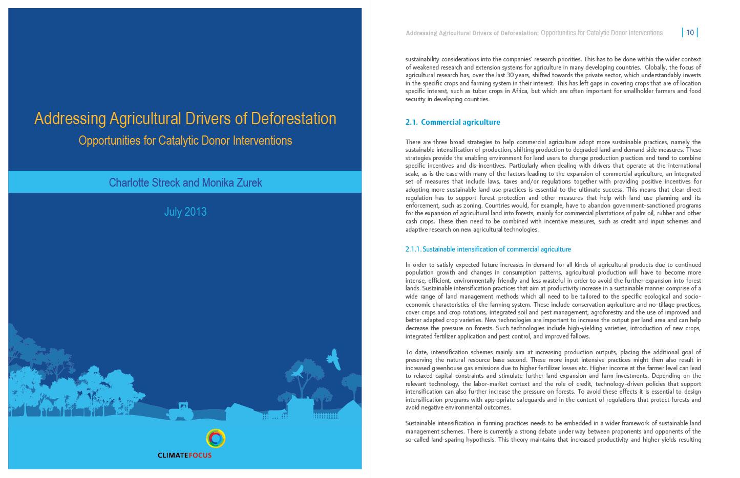 AG drivers of deforestation CF
