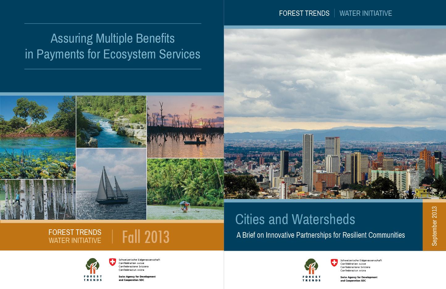 Water Initiative Cover Designs