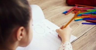 homeschooling 17082021160032088 Vision Art NEWS