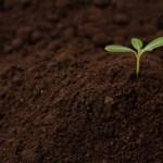 自己の成長を促す15の行動と対策-理想の自分に代わる方法