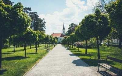 Planting a D6 Church