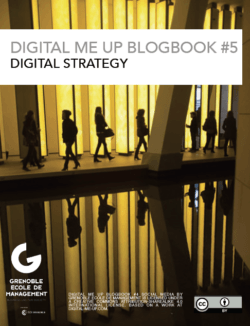 Our digital strategy eBooks are made available in pdf format and under an open creative commons licence