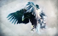 painting-of-an-eagle-artistic-hd-wallpaper-1920x1200-3324