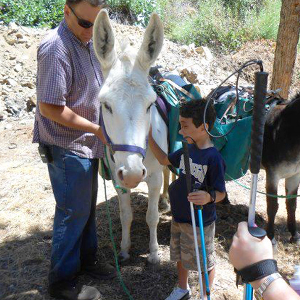 Humoody Smith pats a trail mule while hiking in the San Gabriel Mountains near Los Angeles with Daniel Kish, Brian Bushway and his parents in 2012.