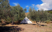 Bell Tent (plus € 735,-)