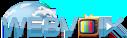 webvoix logo11