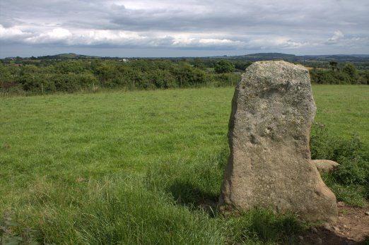 06. Robinstown Great Stone Circle, Co. Wexford
