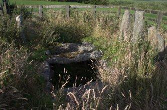 02-drumlohan-ogham-stones-souterrain-waterford-ireland