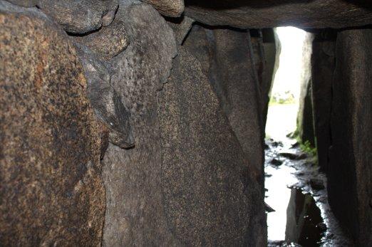 14-seefin-passage-tomb-wicklow-ireland