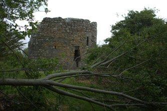 01-parkavonear-castle-kerry-ireland