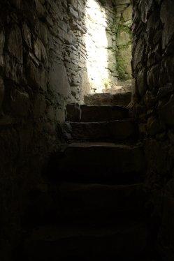 05-parkavonear-castle-kerry-ireland