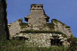 06. Castlelyons Castle, Cork, Ireland