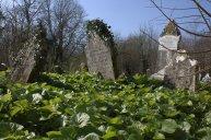 12. Templemichael Church, Waterford, Ireland