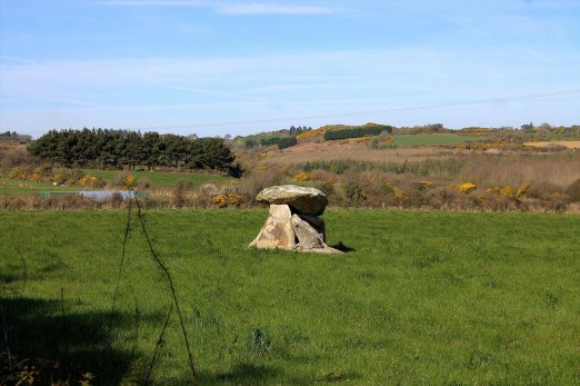 01. Ballynageeragh Portal Tomb, Waterford, Ireland