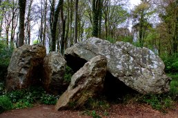 02. Aideen's Grave Portal Tomb, Dublin, Ireland