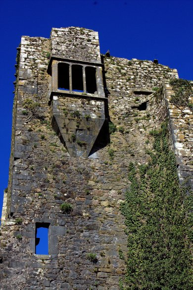 09. Grannagh Castle, Kilkenny, Ireland