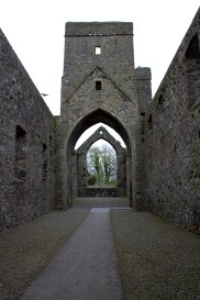 03. Carlingford Priory, Louth, Ireland