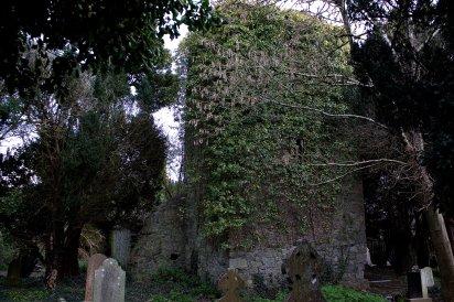 02. St Patrick's Church, Kildare, Ireland