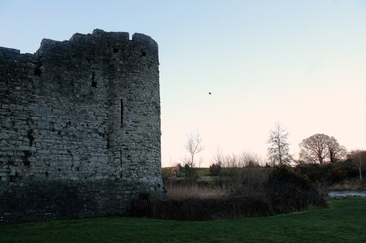 28. Trim Castle, Meath, Ireland
