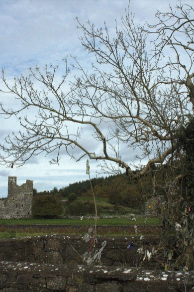 33. Fore Abbey, Westmeath, Ireland