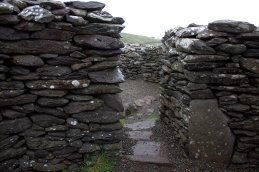 16. Cashel Murphy, Kerry, Ireland