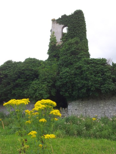 29. Dangan Castle