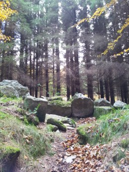 01. Kilmashogue Wedge Tomb, Co. Dublin