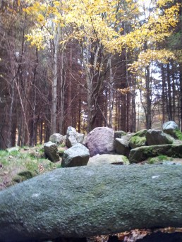 03. Kilmashogue Wedge Tomb, Co. Dublin