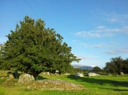 07. Castleruddery Stone Circle & Henge