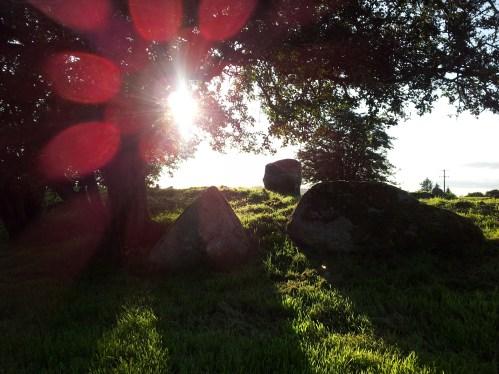 14. Castleruddery Stone Circle & Henge