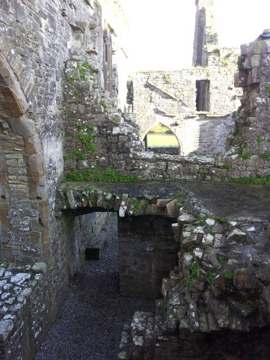 40. Bective Abbey, Co. Meath