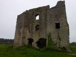 02. Puck's Castle, Rathmichael, Co. Dublin