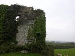 03. Puck's Castle, Rathmichael, Co. Dublin