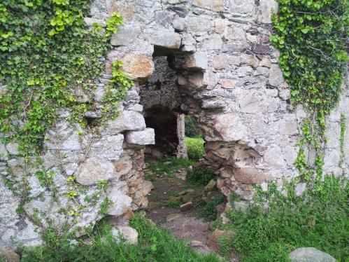 04. Puck's Castle, Rathmichael, Co. Dublin