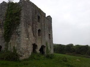 14. Puck's Castle, Rathmichael, Co. Dublin